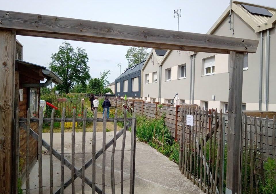 Réouverture des jardins en pieds d'immeuble dans les quartiers prioritaires d'Angers